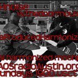 Mega Produced Harmonization EGE KAOS radio Austin Mosh Pit Hell of Metal Punk Hardcore doormouse dmf