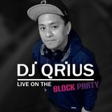 THE BLOCK PARTY (MIX 3) - KIIS 106.5 FM by Dj Qrius