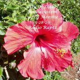 City Of Lights Soundsystem 5-28-20 w/Dj Meeshu on Radio Raptz