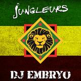 DJ Embryo - Jungleurs Mix