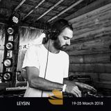 Mr MENDEL // LEYSIN MIX