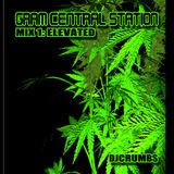 Gram Central Station Mix 1 (Elevated)