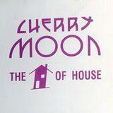 Resident DJ Team at Cherry Moon (Lokeren - Belgium) - July 1992