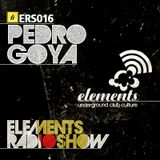 ERS016 - Pedro Goya
