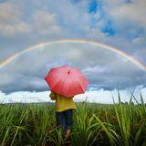 Le Prof @ Wilderness 2014 - Rainbow