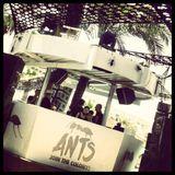 MAAYAN NIDAM / Live broadcast from Ants at Ushuaia / 22.06.2013 / Ibiza Sonica