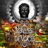 The Traveler : CALLES DE VOCES