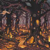 DEEPRYTHM - Hallucinogenic Roots