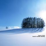 Eugene Galin - Burst in winter serenity.