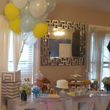 BABY SHOWER THE DANCEHAL EDITION