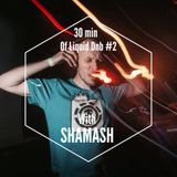 30 min of liquid drum&bass #2 with SHAMASH (Ground control)
