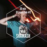 30 min of liquid drum&bass #2 with SHAMASH (Ground control)