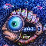Buddhafish Psychedelic Podcast Spring 2016