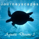 Aquatic Dreams 3 (#082)