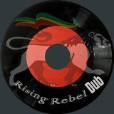 Vinyl Freestyle Dub Session Vol. 1
