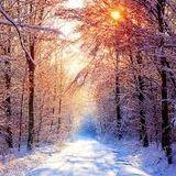 Alex Favell - Warm Up Winter Classics 1