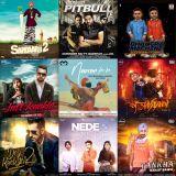 2016 : NEW Bhangra Music #06