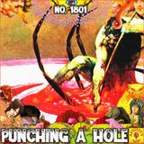 #1801: Punching A Hole