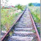 Ein weiter Weg - 03_2012