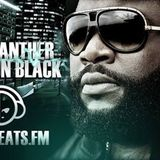 BLACK PANTHER - SENSATION BLACK (Show vom 21.07.15) EDM SPECIAL
