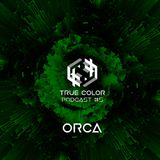 True Color Podcast 05 - Orca