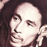 Bob Marley-interview  from september 15. 1980 by Stephen Davis.