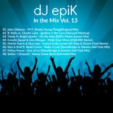 dJ epiK - In the Mix Vol. 13
