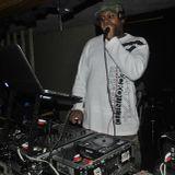 DJ MEGA - LIVE AT CENTER ST ALLEY 2-22-2014