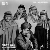 Diddy Wah w/ Fritz Buzzsaw - 13th May 2019