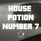 House Potion Number 7