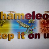 Step it on up (Slaker Funk'a Remix) Producing, Recording, Editing & Re-Mixing by M. Luciano