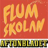 """Gustav Fridolin """"Från Vittsjö till världen"""""""