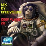Deep Planet 28 ][ Mix by Groovelock