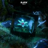 Holly - Ilex Vol. 1