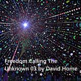 Freedom Calling The Unknown 03 by David Home-DJ