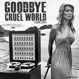 Goodbye Cruel World Tour 2014 (Live)