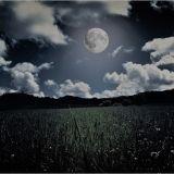 Full Moon Festival Promo Mix