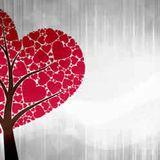 Láska přes inzerát