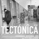 Tectónica Radio - Fonograma Nacional 002 por Toto Friedlaender