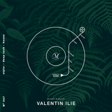Sounds Of Matinee - Podcast Dance FM pres. Valentin Ilie [047]