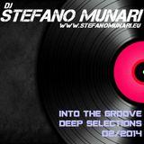 INTO THE GROOVE - DEEP SELECTION FEBRUARY 2014 - DJ STEFANO MUNARI