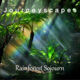 Rainforest Sojourn (#013)