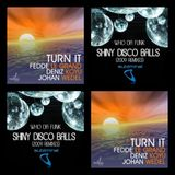 Fedde Le Grand Deniz Koyu & Johan Wedel Vs Who Da Funk - Turn It Disco Balls (Sebhouse Mash-Up)
