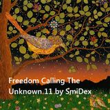 Freedom Calling The Unknown 11 by SmiDex