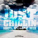 220 Sound (Steba Rudedogg) - Just Chillin 100% Reggae Mix (2013 Mix CD)