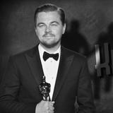 Kinostop #12 - Oskarji 2016, Izganjalke duhov, slovenski prevodi