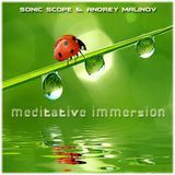 Sonic Scope & Andrey Malinov - Meditative Immersion (Double Mix)