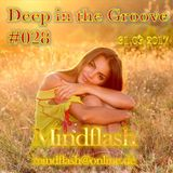Deep in the Groove 028 (31.03.17)