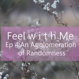 Feel with Me- Episode 4: An Agglomeration of Randomness