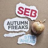 Seb - Autumn Freaks